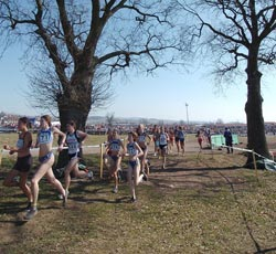 Championnat du Morbihan de cross-country : les engagés